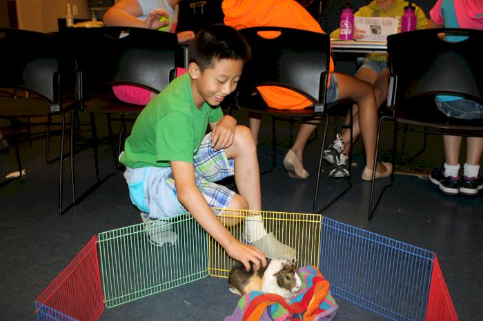 Campers explore genetics with Chubby the guinea pig